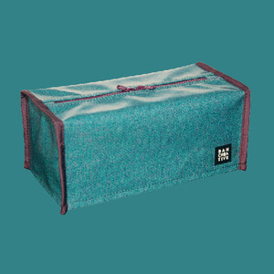 TISSUE CASE_mint